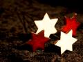 Sterne zum Stecken